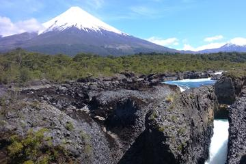 Private Tour: Puerto Montt, Puerto Varas and Vicente Peres Rosales National Park
