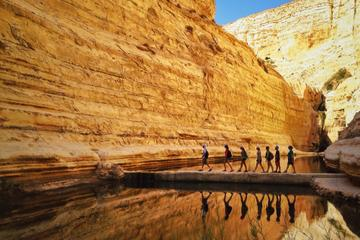 Private Tour:The highlights of the Negev From Jerusalem