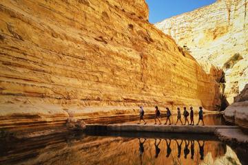 Private Tour:The highlights of the Negev From Tel-Aviv