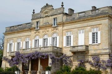 Private Tour: Wine Harvest and Tasting Trip from Bordeaux