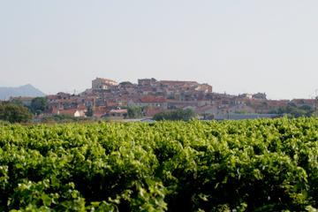 Private Transfer from Toulon Hyeres Airport to Puget sur Argens