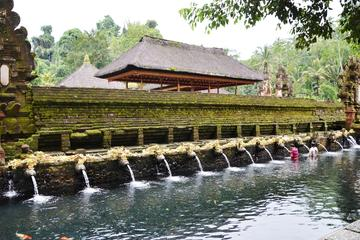 Private Ubud Tour: Batubulan Village, Tirta Empul Temple, Monkey Forest with Lunch