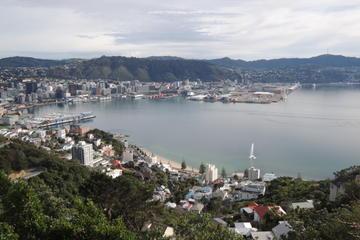 Private Wellington City Tour