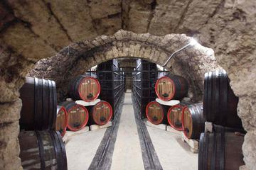Private Wine Tasting Tour at Urlateanu Manor from Bucharest
