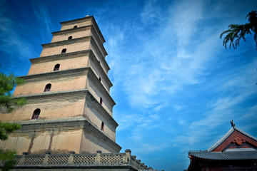 Private Xi'an Terracotta Warriors Day Trip from Guangzhou by Air