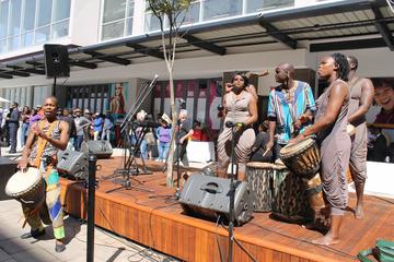 Public Art and Newtown Tour in Johannesburg