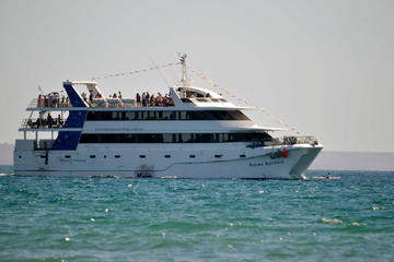 Puerto Madryn Gulf Sightseeing Cruise