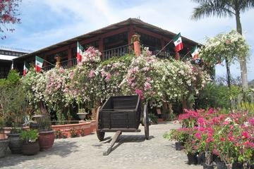 Puerto Vallarta Botanical Gardens and Lunch on Playa Las Gemelas