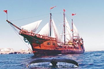 Puerto Vallarta Shore Excursion: Banderas Bay Pirate Sailing Cruise