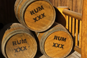 Punta Cana Rum Distillery Tour
