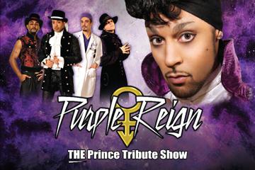 Purple Reign, The Prince Tribute Show at Westgate Las Vegas