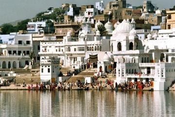 Pushkar Private Day Trip