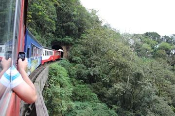 Rail Tour from Curitiba to Morrete