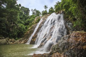 Rainforest Ziplining and 4x4 Ride from Koh Samui