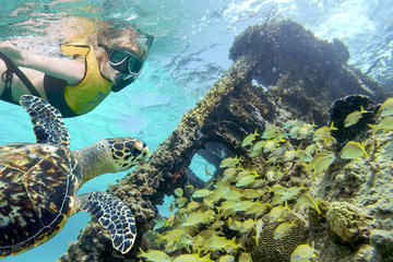 Reef and Shipwreck Snorkeling Tour in Cancun