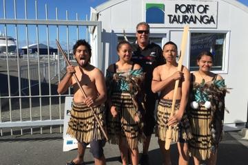 Rotorua Full-Day Tour Including Maori Culture, Geysers, Mudpools and Mt Maunganui