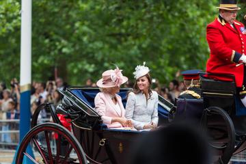 Royal London Walking Tour Including Kensington Palace Visit and Princess Diana Memorial