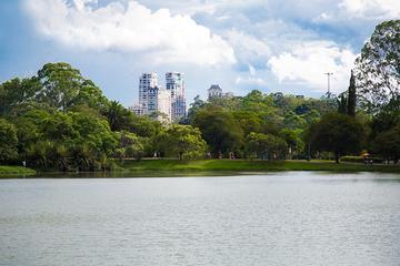 São Paulo Private Tour from Santos Cruise Terminal
