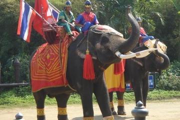 Sampran Elephant Ground and Zoo Tour from Bangkok