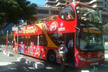 Santa Cruz de Tenerife Hop-On Hop-Off Tour