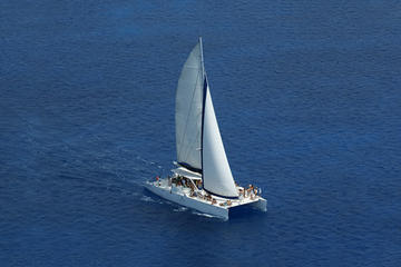 Saona Paradise Island Speedboat and Catamaran Excursion