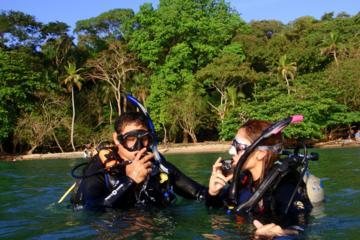 Scuba Diving Adventure for Beginners
