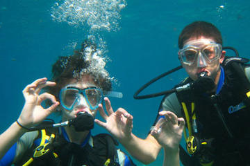 Scuba Diving in Ibiza: Certified or Beginner Course