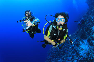 Scuba Diving or Snorkelling for Beginners in Side