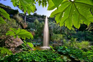 Semi-Independent Ischia Coach Tour with Visit to La Mortella Botanic Gardens from Sorrento