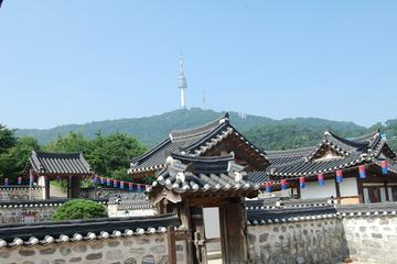 Seoul Morning Half-Day Tour including Seoul Tower, Namsan Hanok Village and The War Memorial of Korea