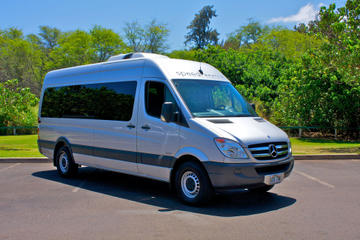 Shared Arrival Transfer: Honolulu Airport to Hotel or Cruise Terminal