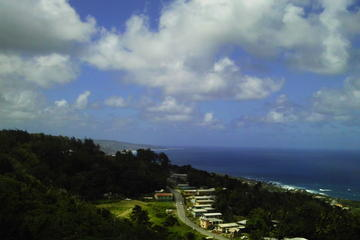 Shore Excursion: Barbados Private Island Tour