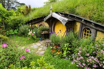 Shore Excursion: Hobbiton and Lord of the Rings Movie Set Tour