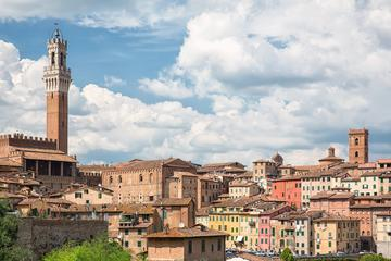 Siena San Gimignano and Pisa Semi-Independent Tour by Bus from Florence