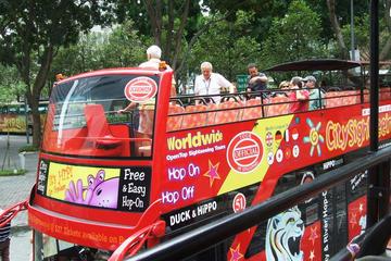 Singapore City Hop-on Hop-off Tour