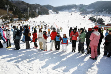 Full-Day Ski Package at Elysian Gangchon Ski Resort