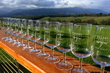 Small-Group Boutique Yarra Valley Winery and Chocolatarie Tour from Melbourne with Eureka Skydeck Edge Experience