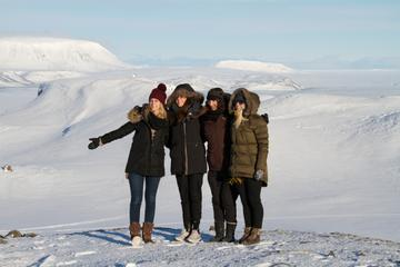 Small-Group Day Trip to Thorsmork and Eyjafjallajokull from Reykjavik