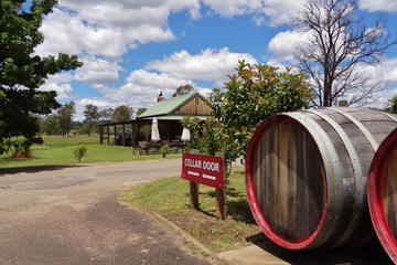 Small-Group Hunter Valley Wine and Cheese Tasting Tour from Sydney