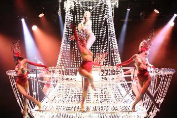 Small Group Paris Night City Tour and Lido Show