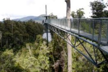 Small-Group Tour from Hobart to Mt Wellington and Tahune AirWalk