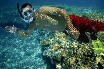 Snorkel and Sunset Sail: Rum n' Reggae