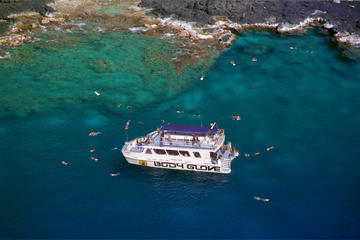 Snorkel Dolphin Adventure aboard Luxury Catamaran