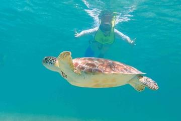 Snorkel Xtreme Cancun