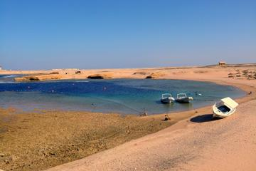 Shore Excursion: Snorkeling in Sharm El Naga