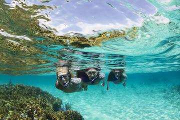 Snorkeling Tour in Panama