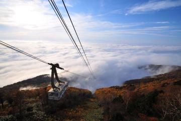 Snow Monkey and Ropeway Day Trip in Nagano