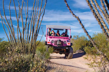 Sonoran Desert Off-Road Jeep Tour with Optional Cowboy Experience