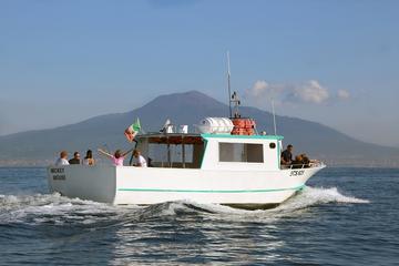 Sorrento to Pompeii and Mt. Vesuvius by Boat