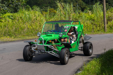 Soufriere Safari Buggy Tour
